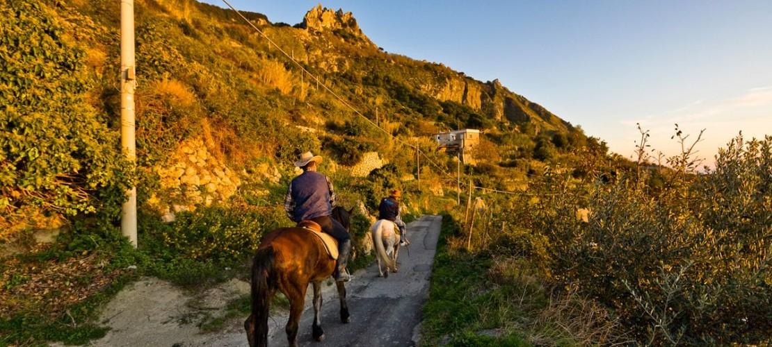 Escursione a cavallo all'Epomeo