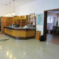 Hotel La Pineta hall