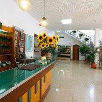 Hotel La Pineta detalii hall