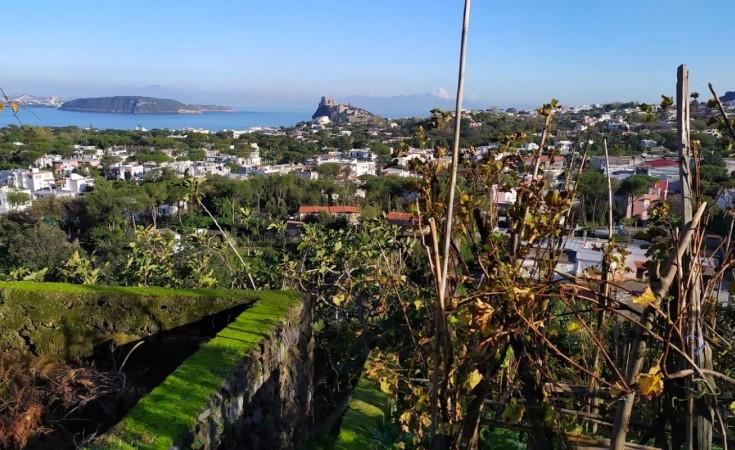 Ce să faci în Ischia în ianuarie